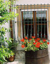 Casa Bartula - traditional house with great views of Monte Rosa, and walking distance from a wonderful Pizzeria / Restaurant